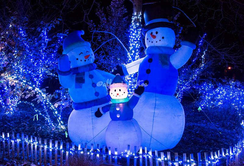Snow family,  Wild Lights, St Louis Zoo,