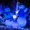 Snow family,  Wild Lights, St Louis Zoo,