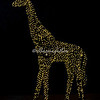 Wild lights giraffe, St Louis zoo