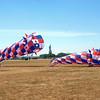 Liberty State Park kites