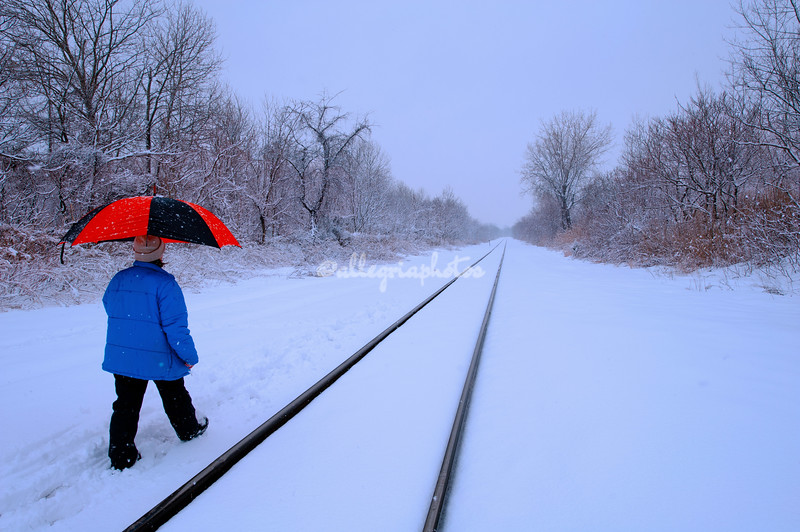 Railway lines in the snow