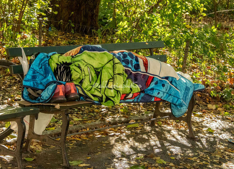 """""""Even he needs to nap"""", Sleeping figure on a bench in Central Park, New York City,"""