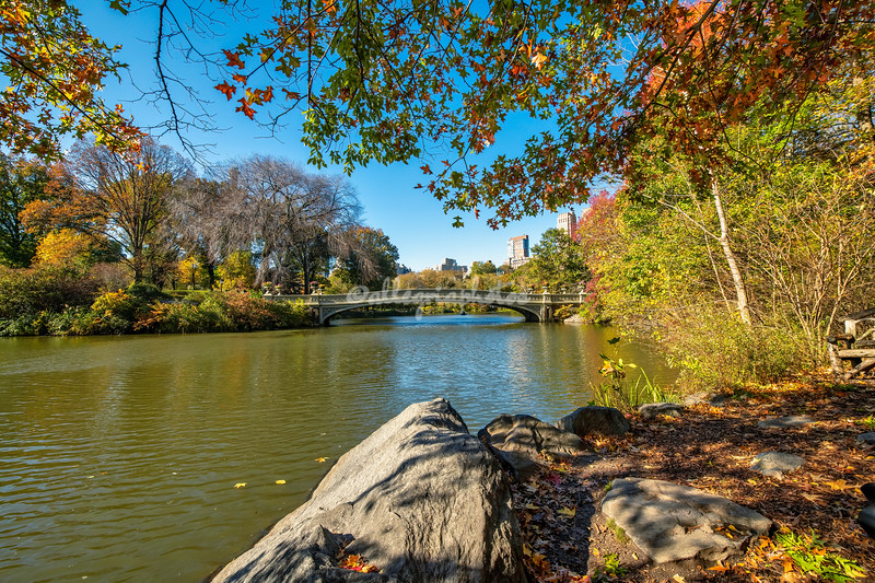 View across the lake to Bow Bridge, Central Park, New York City