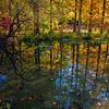 Reflection of autumn, New York Botanical Garden, New York City