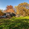 Rocky meadow, New York Botanical Garden, New York City