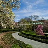 Magnolia corner, Brooklyn Botanical Garden, New York