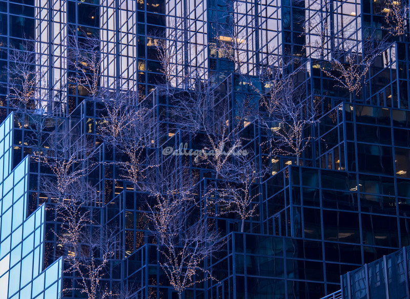 Reflections in glass, New York