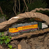 "Crossing a ""branch"" bridge, New York Botanical Garden annual Christmas train show"