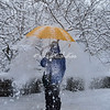 A snow shower in Riverside Park