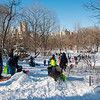 Sledding in Central Park, NYC