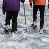 Snowshoeing in Central Park, NYC