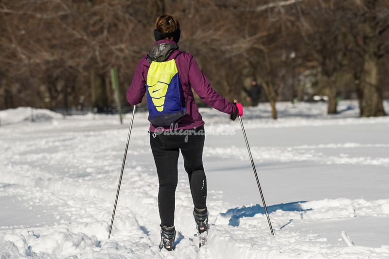 Cross country skiing in Central Park, NYC