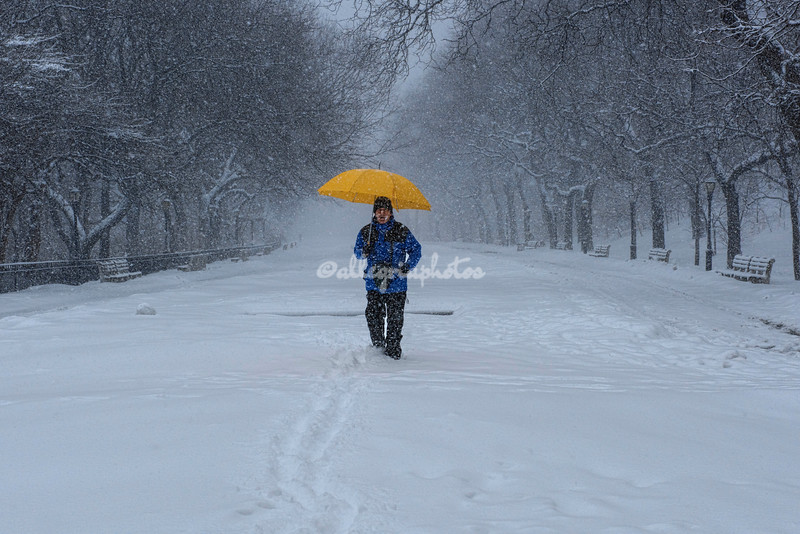 A walk in the snow in Riverside Park, New York City