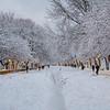 Riverside Park, Upper West Side, Manhattan, New York City