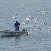 A fisherman, Coquille River Estuary, Oregon