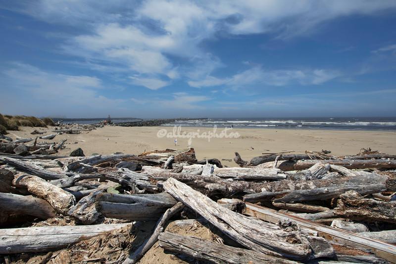 Coquille Beach, Oregon