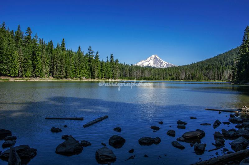 Frog Lake and Mt Hood, Oregon
