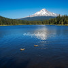 Mt Hood and Trillum Lake, Oregon
