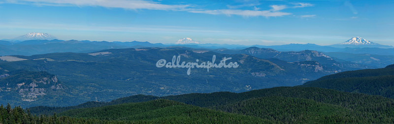 View from Mt. Larch, Oregon