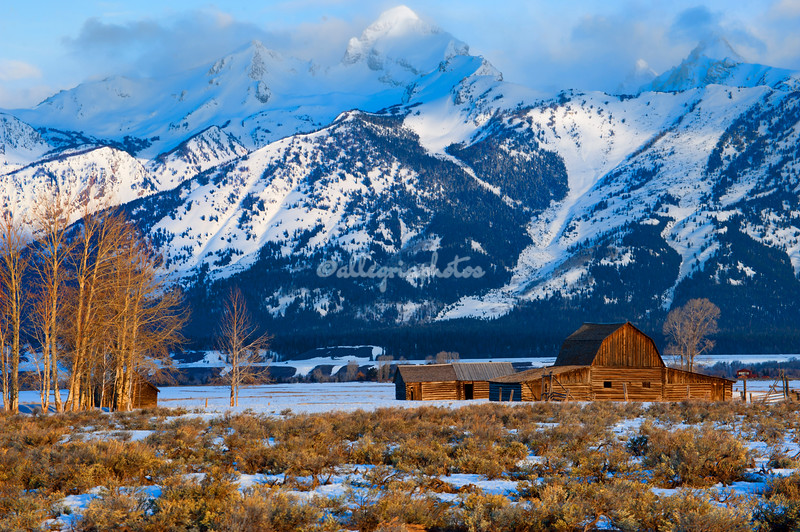 Mormon Row, Grand Teton