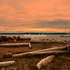 Tillicum Island, Seattle