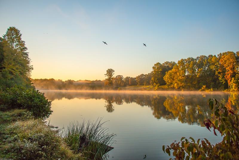 Autumn Morning Flight over Royal Lake