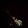 Danzas Oníricas - fotos nuevas