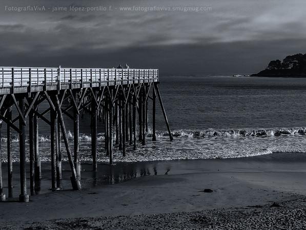 Pacífico californiano