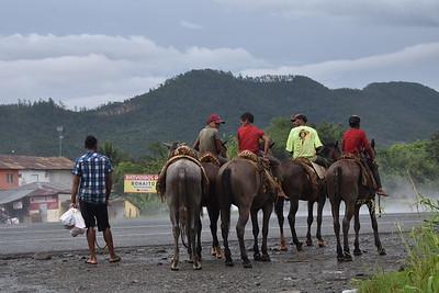 caballos Bonao