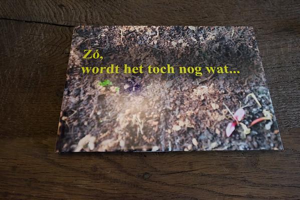 Foto: Jeroen Joosen
