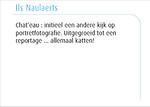 Ils Naulaerts