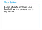 Theo Boekee