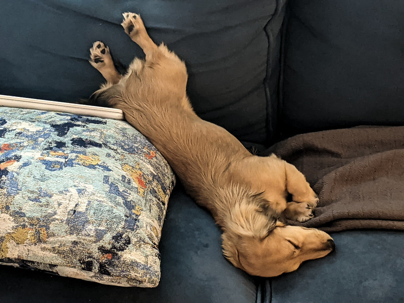 skittles wipeout nap