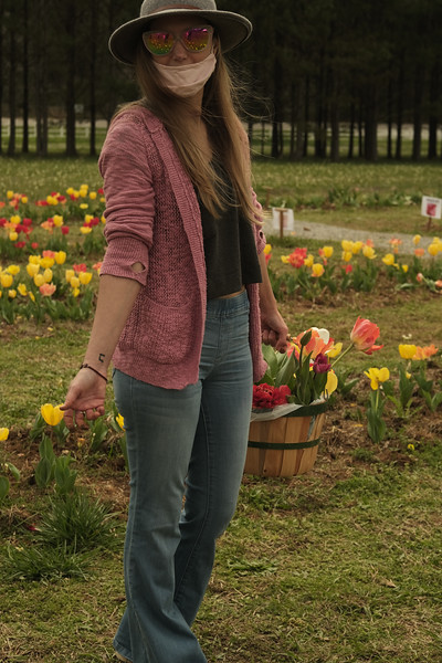Picking Tulips in Montevallo's American Village