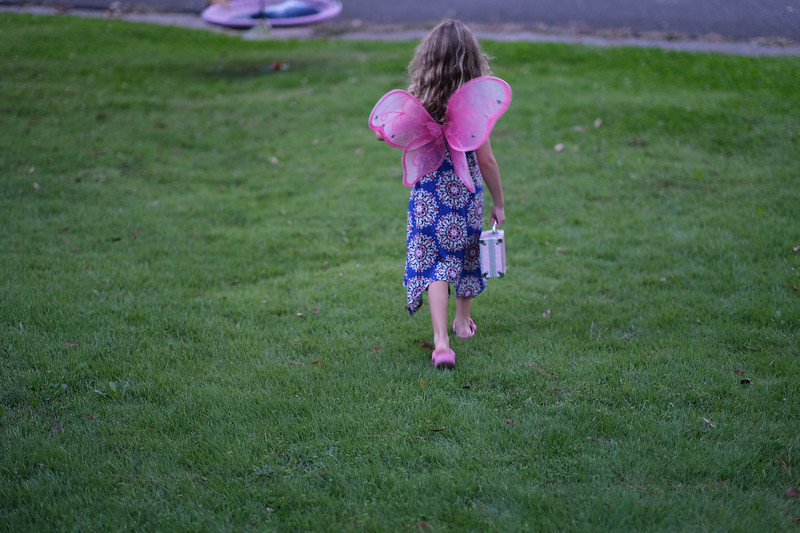 willow the fairy in the yard