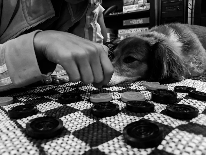 make your move :: playing checkers with lyla... and annie
