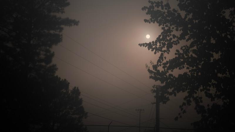 morning sun and fog