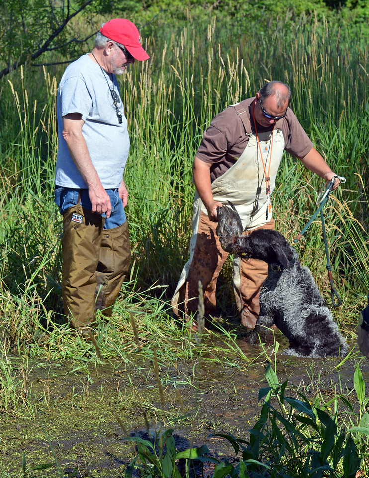 Jar z Lovčických tarasů  practices duck track and retrieve with owner, Craig Kukay.
