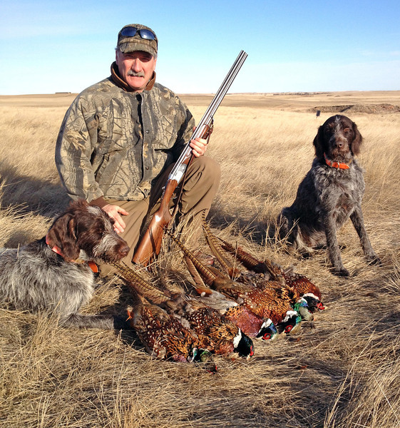 Pheasant hunting in North Dakota.