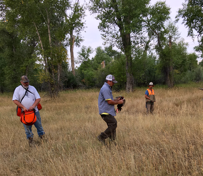 Rusty Dill (holding the bird) along with John McDunn (holding the bird bags) and Randy Ross were our great volunteer bird handlers.