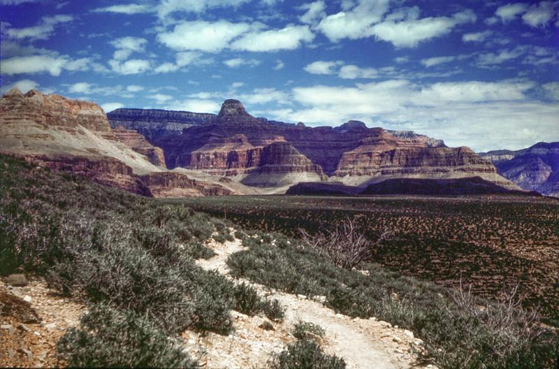1960 (est) Grand Canyon