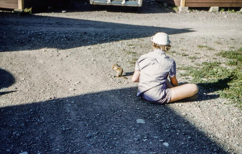 1953 (est) Glacier National Park