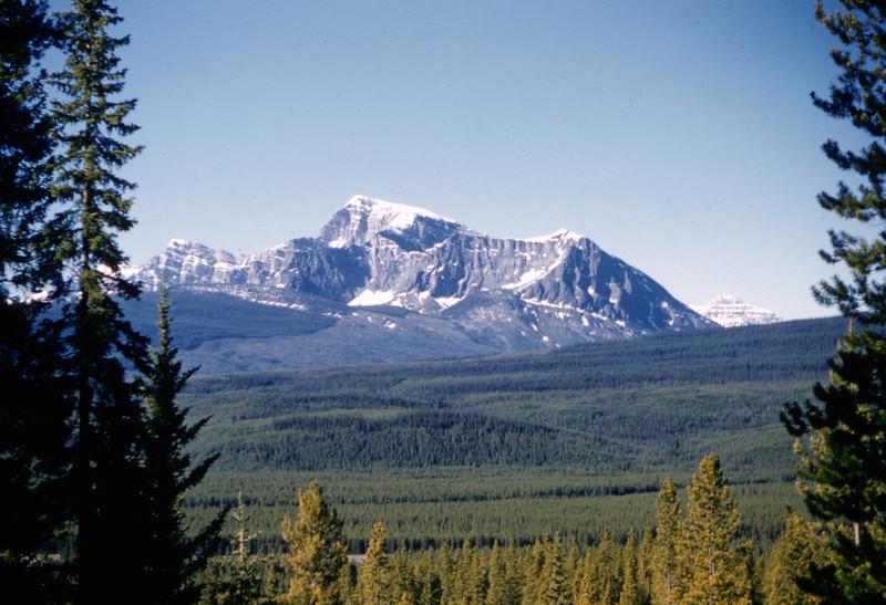 1951 (est) Colorado