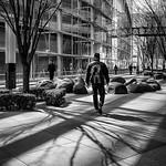Trace O'Rouke - Walking amoung shadows