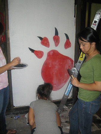 Paint the UC 2008