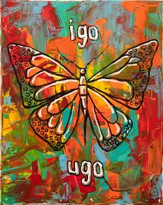 Butterfly-1628