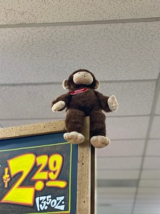 Costa Mesa —Mandy the Monkey