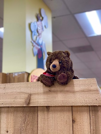 Mission Viejo — Banjo the Bear