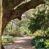 Washington Oaks