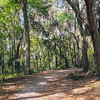 Jacksonville Arboretum and Gardens